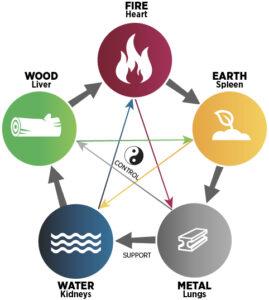 5 elementen